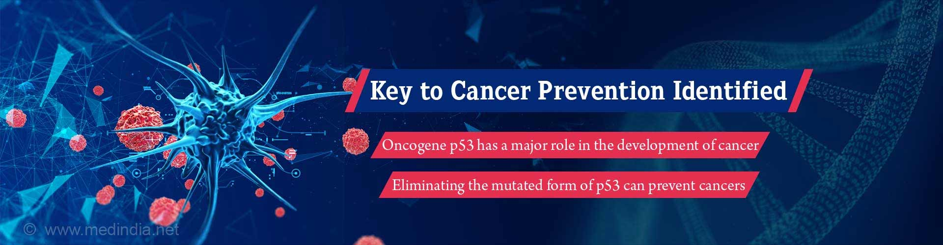 Unmutated Form of P53 Protein is the Key to Cancer Prevention