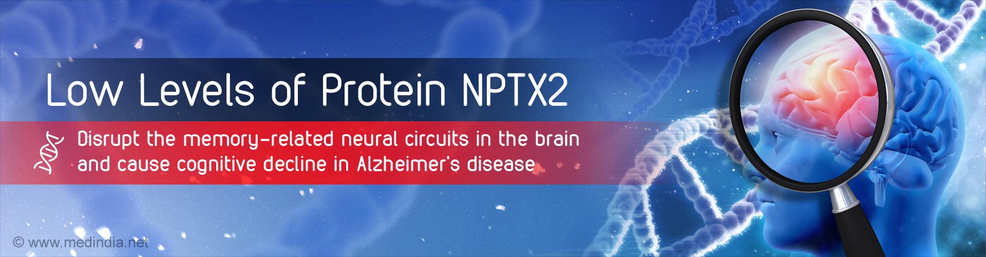 ''Memory Proteins'' Cause Dementia in Alzheimer''s Disease