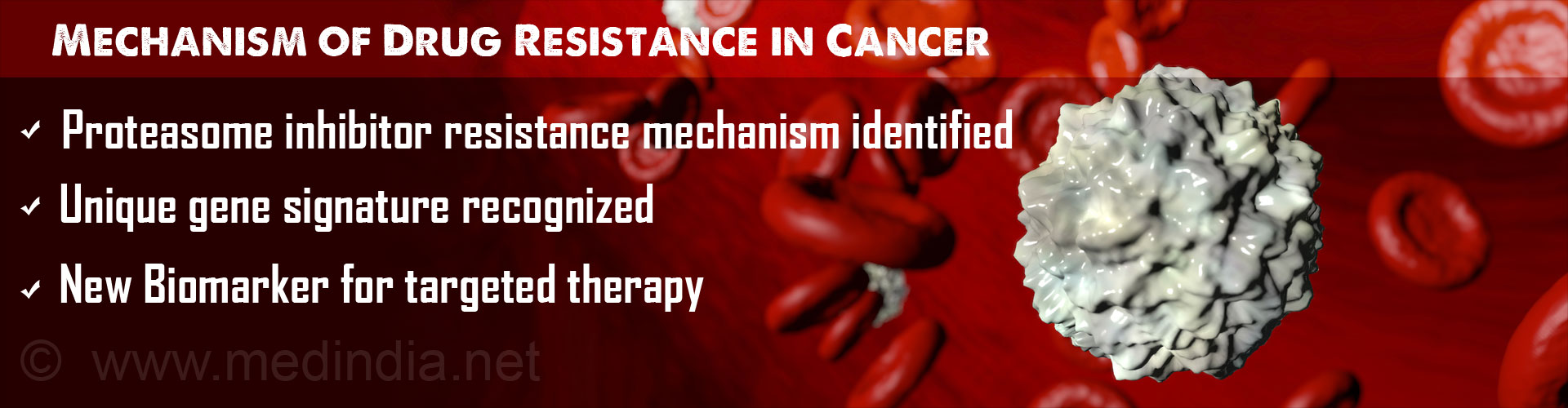 Gene Signature Identified in Mechanism of Resistance to Cancer Drug Therapy