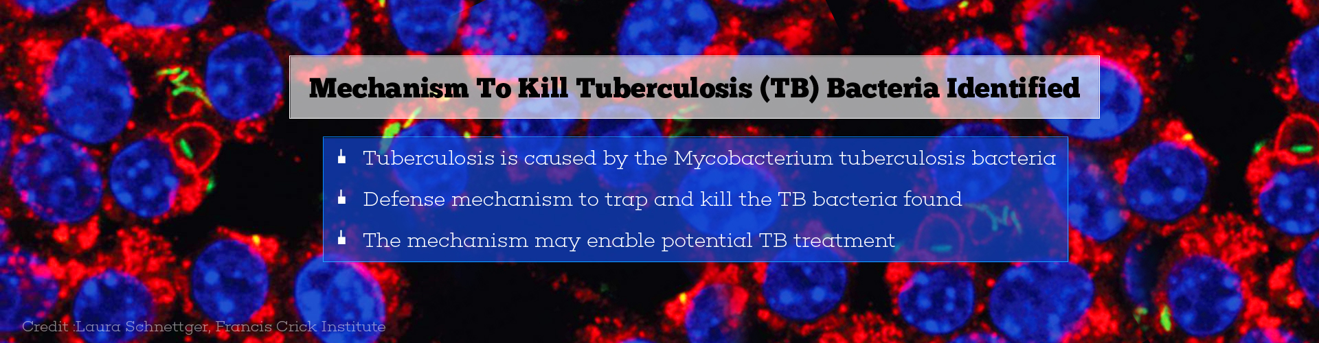 Natural Mechanism To Kill Tuberculosis Bacteria Discovered