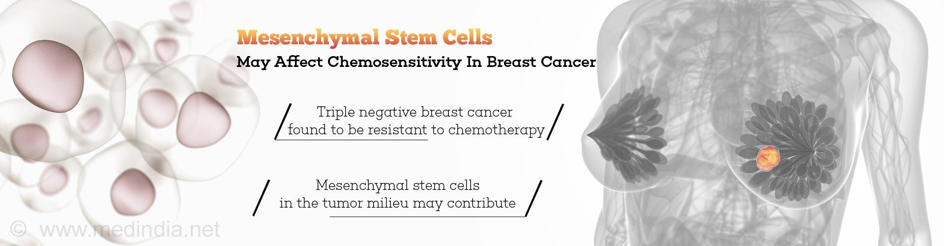 Chemo-resistance in Triple Negative Breast Cancer Linked To Mesenchymal Stem Cells In Tumor