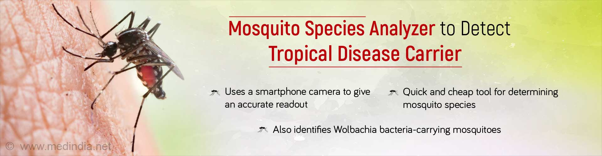 Mosquitoes Causing Dengue and Yellow Fever are Easily Identified With a New Analyzer
