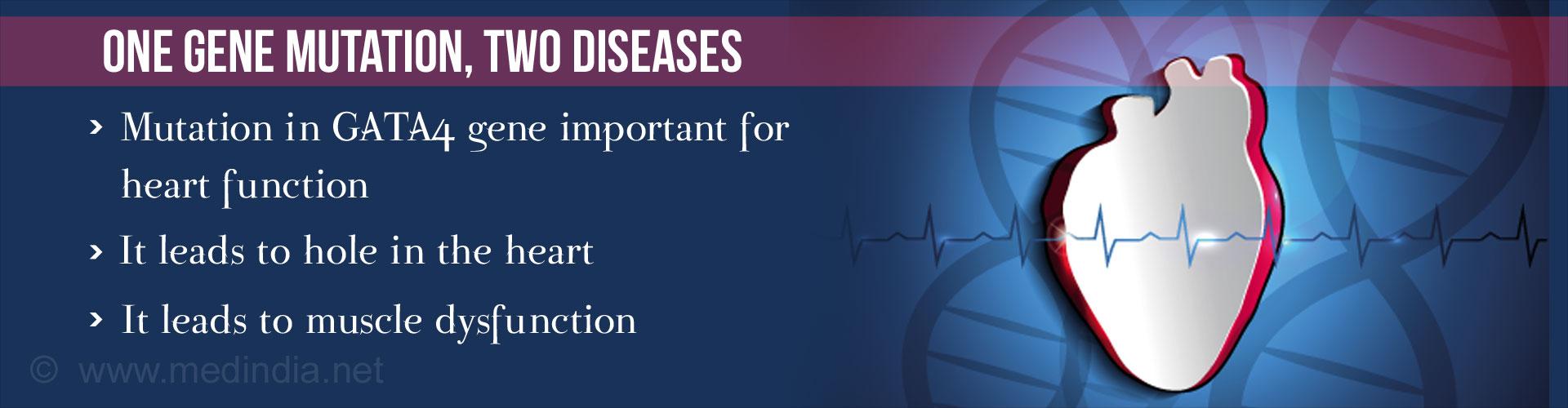 Multiple Congenital Heart Defects Linked to a Single Gene Mutation