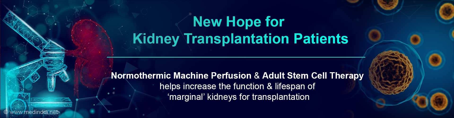 Kidney Transplant Patients Provided With New Hope - Use of Normothermic Machine Perfusion With Stem Cells