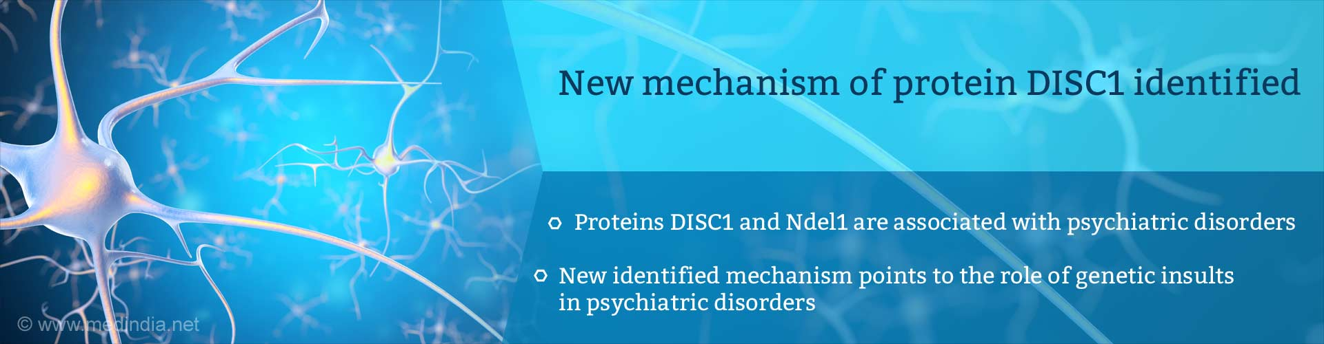 Mechanism of Psychiatric Disorder Agent Identified