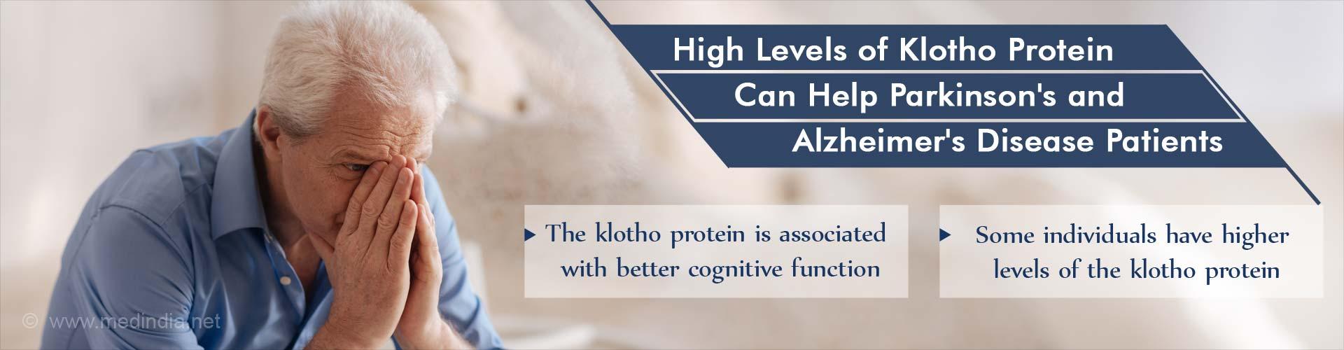 Klotho Protein Fragment (αKL-F) Could Improve Cognition