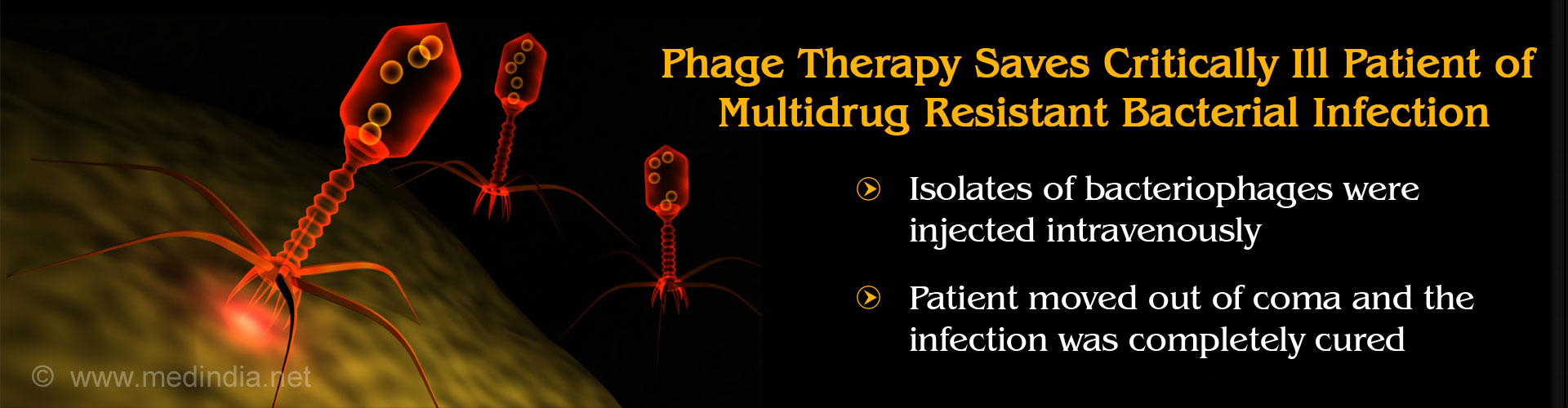 Phage Therapy Saves Patient With Multi-Drug Resistant Bacterial Infection