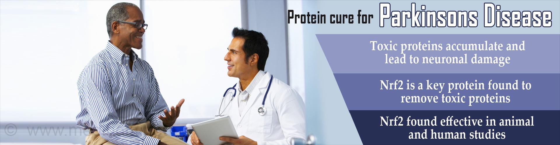 Protein Found  Effective Against Parkinson's Disease