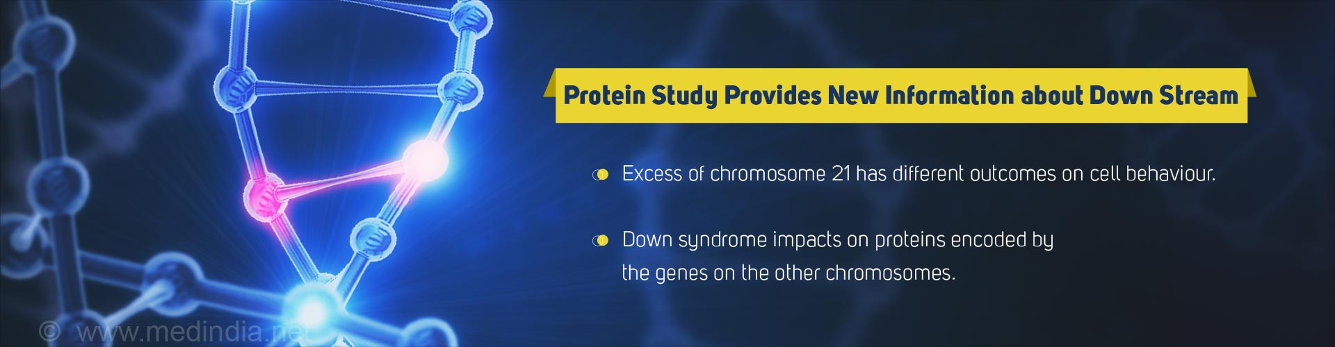 Protein Study Provides New Information About Down Syndrome