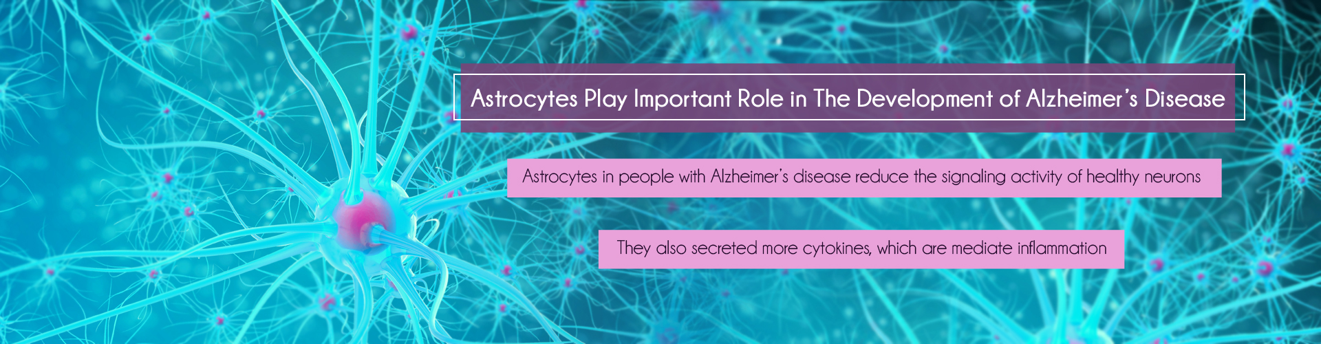 Severe Astrocytes Pathology Involve in Alzheimer's Disease
