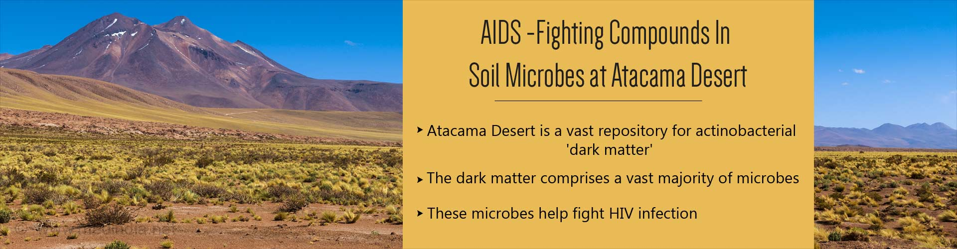 Soil Microbes in Atacama Desert Possess Compounds That Fight HIV