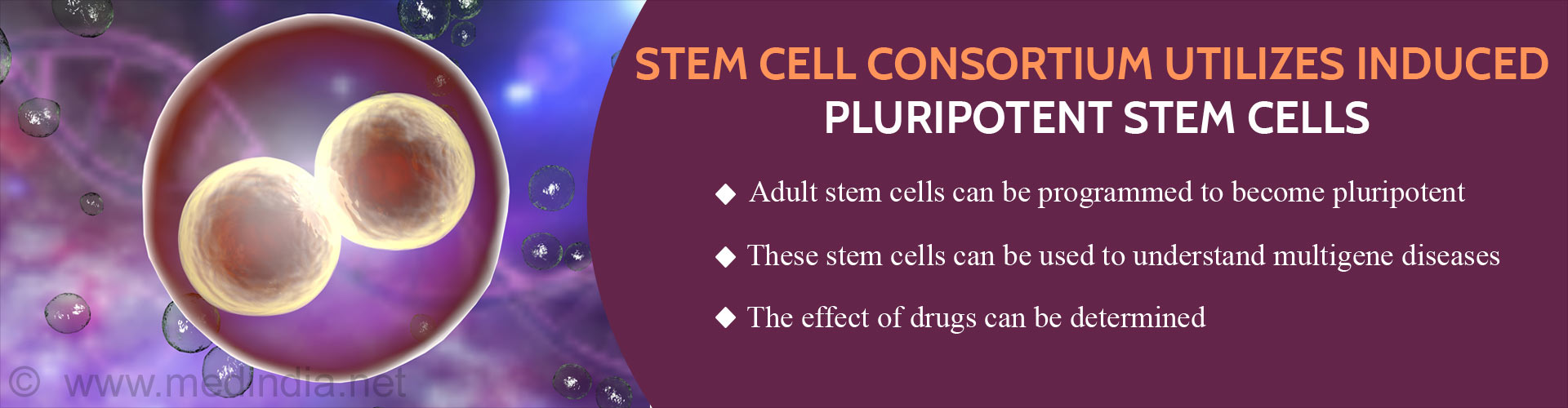 Stem Cell Consortium Uses Induced Adult Stem Cells to Study Complex Diseases