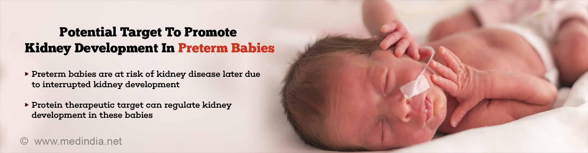 Extending Nephron Development In Preterm Babies May Prevent Kidney Disease Later