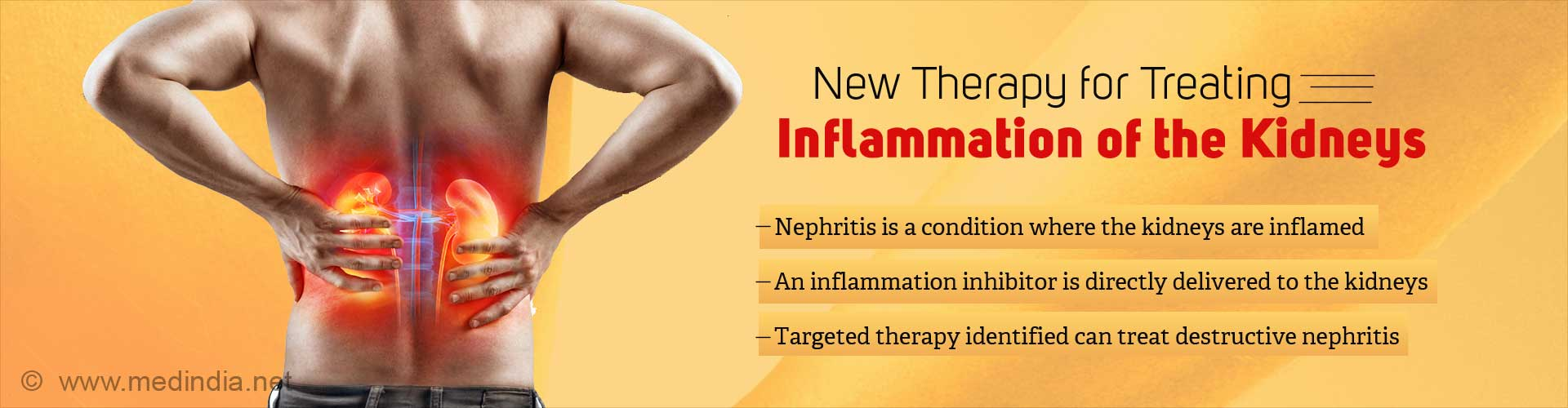 Targeted Therapy for Inflammation of the Kidneys Identified