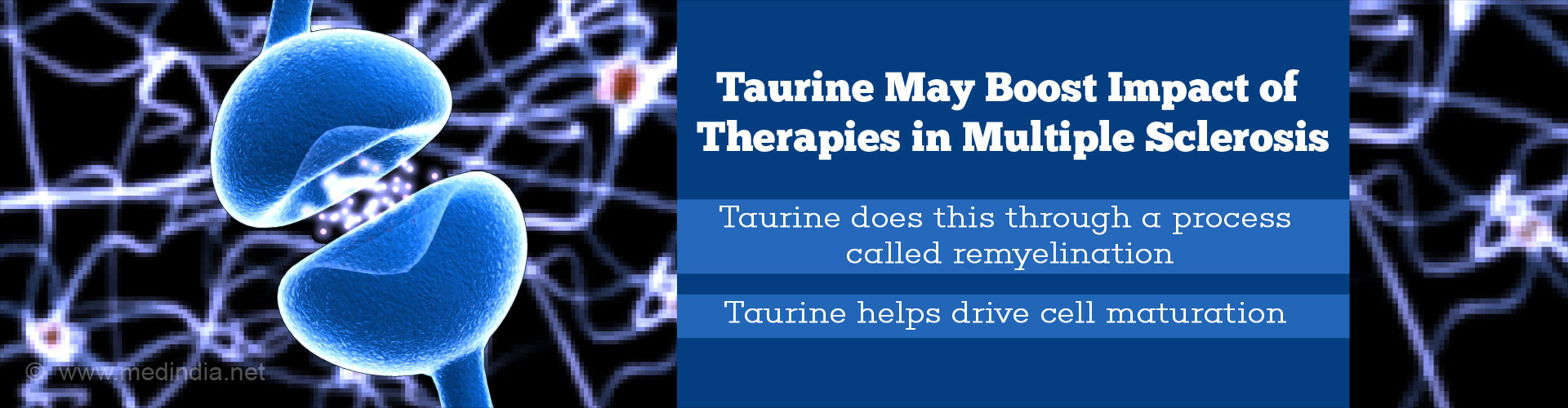 Taurine May Boost Impact of Therapies in Multiple Sclerosis