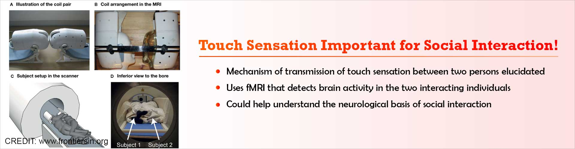 Touch Sensation and Brain Activity Studied Between Couples Using FMRI