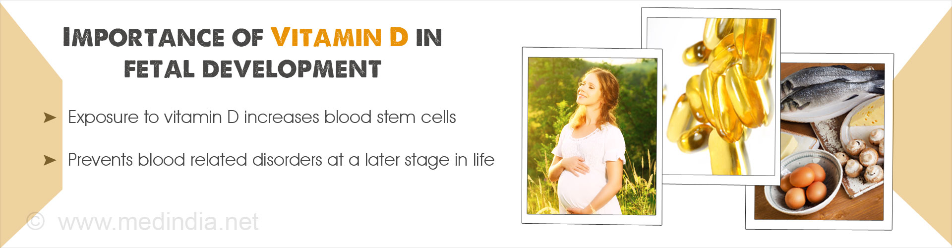 Vitamin D Found to Increase Blood Stem Cells During Development