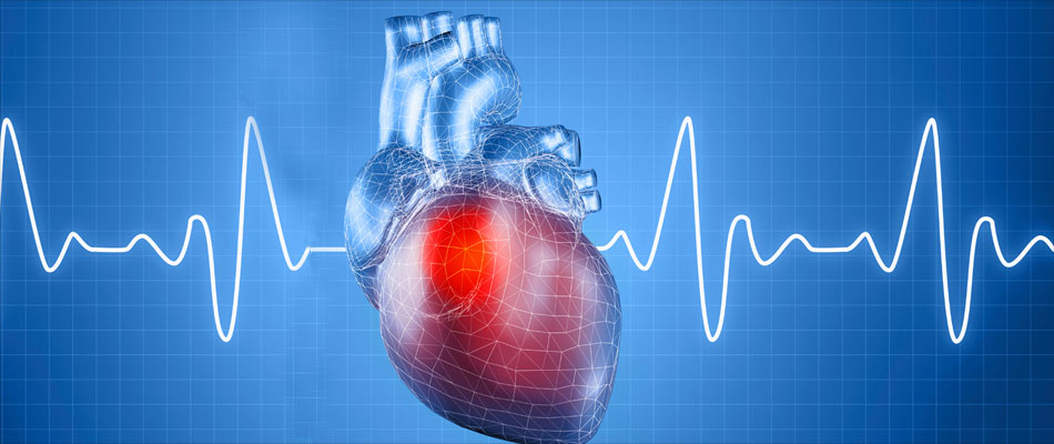 Family History of Heart Disease Puts Children at Greater Risk