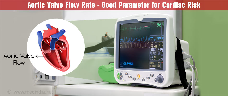 Aortic Valve Flow Rate may be a Good Parameter for Cardiac Risk