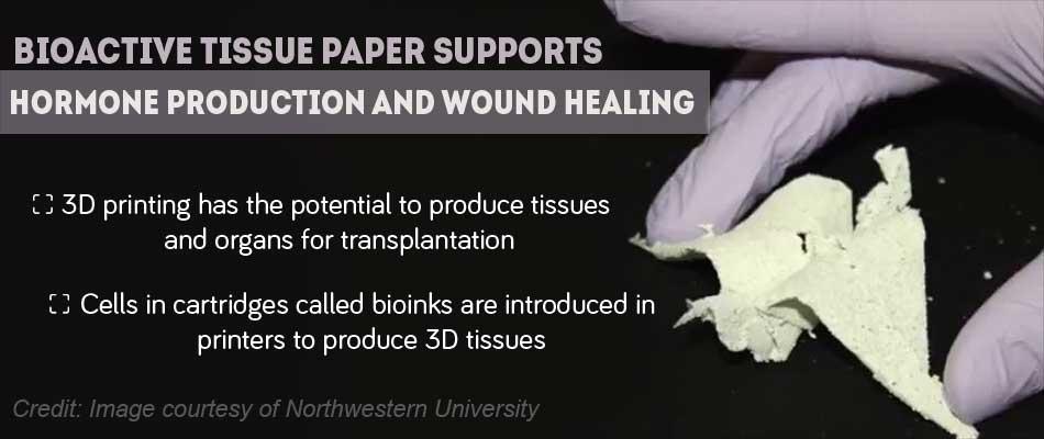 Bioactive Tissue Paper Has Potential Use in Regenerative Medicine