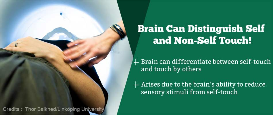 How Does the Brain Differentiate Between Self and Other's Touch?