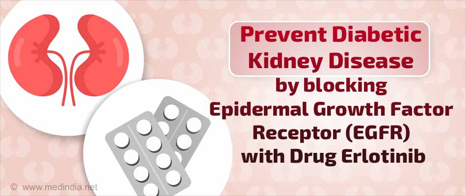 Here's How You can Prevent Diabetic Kidney Disease