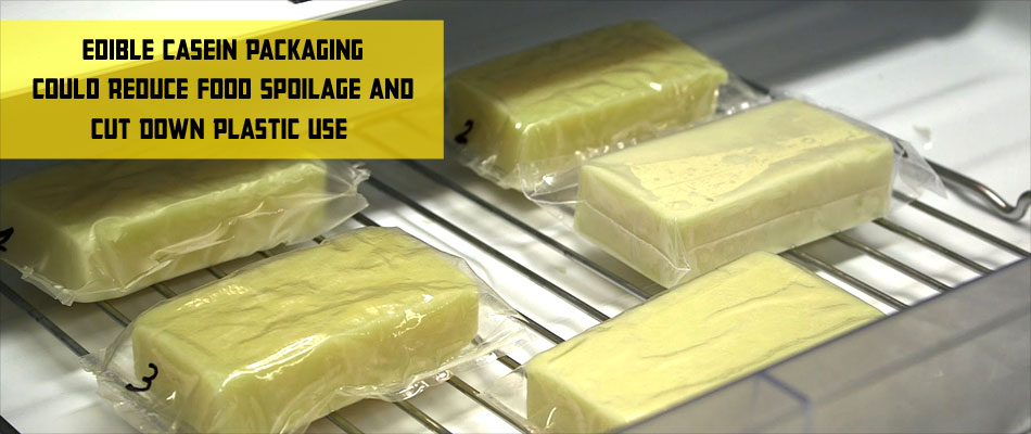 Edible Food Packaging - The Future of Food Industry