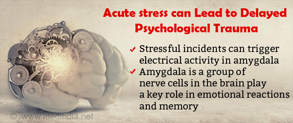 Acute Stress Causes Delayed Effects in the Brain