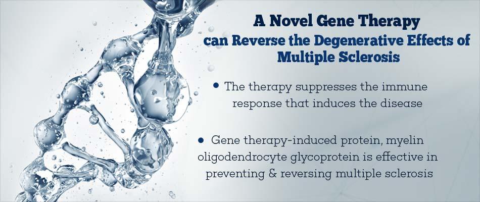 Gene Therapy Method Reverses Immune Response In Multiple Sclerosis