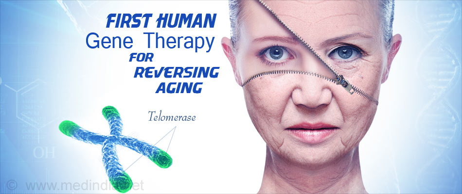 Gene Therapy Against Aging Found to be Successful