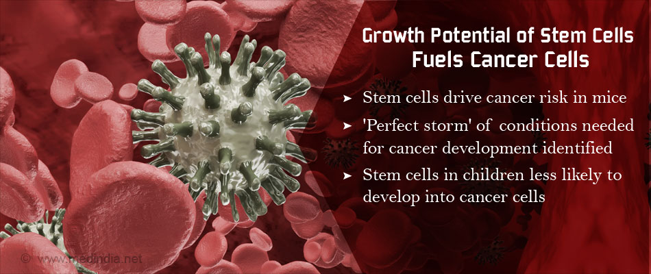 Stem Cells Propagation and Cancer Risk
