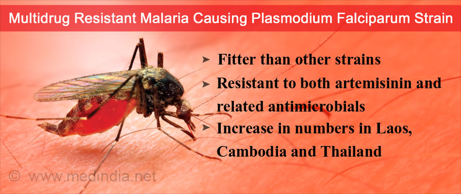 Fitter and Drug Resistant Strain of Malaria Parasite Threatens to Rise to Epidemic Proportions