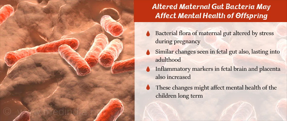 Stress-Related Changes in Maternal Microbiome May Have Lasting Effect in Children