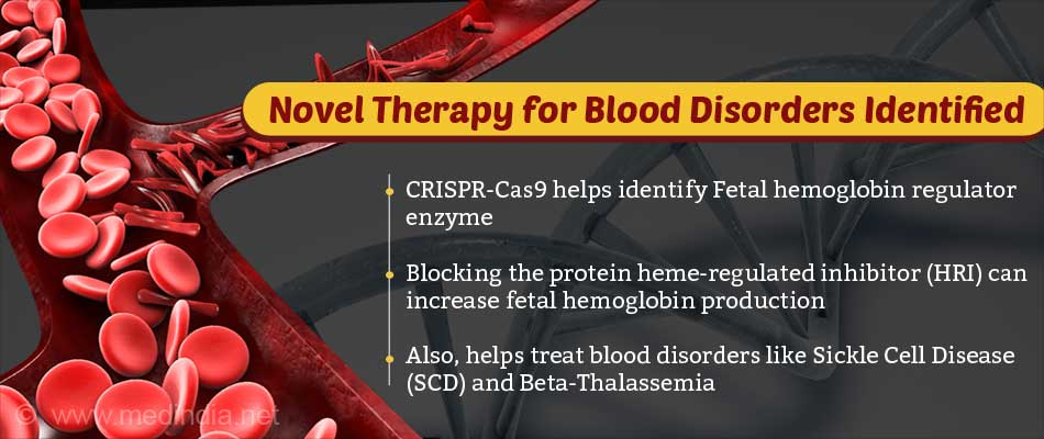 Increasing Fetal Hemoglobin may be the Key to Help People With Sickle Cell Disease and Thalassemia