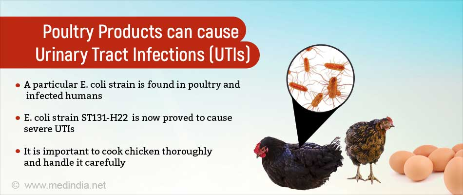 E  Coli from Infected Poultry can Cause Urinary Tract Infection
