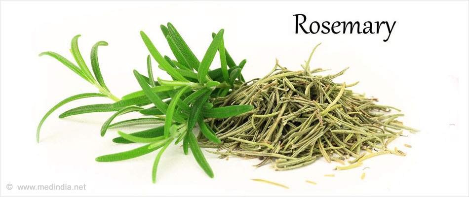 Rosemary Helps Improve Memory Power of Elderly People