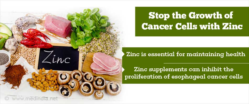 Zinc can stop the growth of cancer cells forumfinder Images