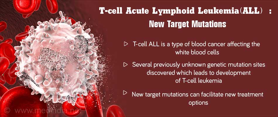 New T-cell Leukemia Target Mutations Identified