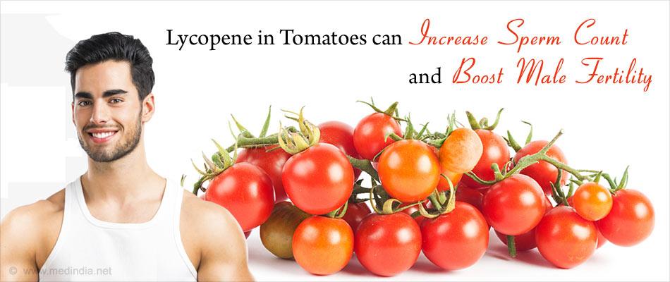 Tomatoes Help Improve Male Fertility