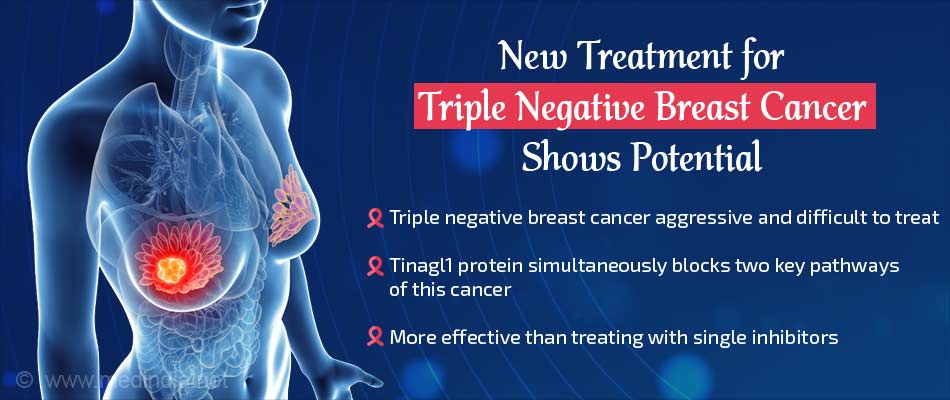 Naturally Occurring Protein Controls Growth and Spread of Triple Negative Breast Cancer