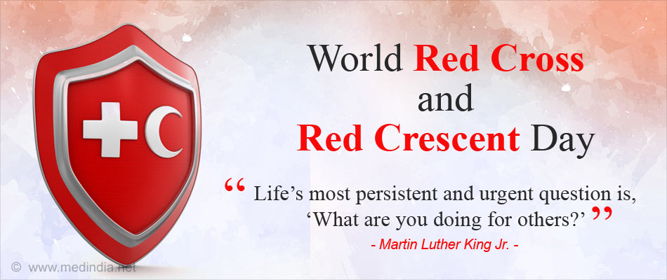 Essay on world red cross day write a program to control a browser