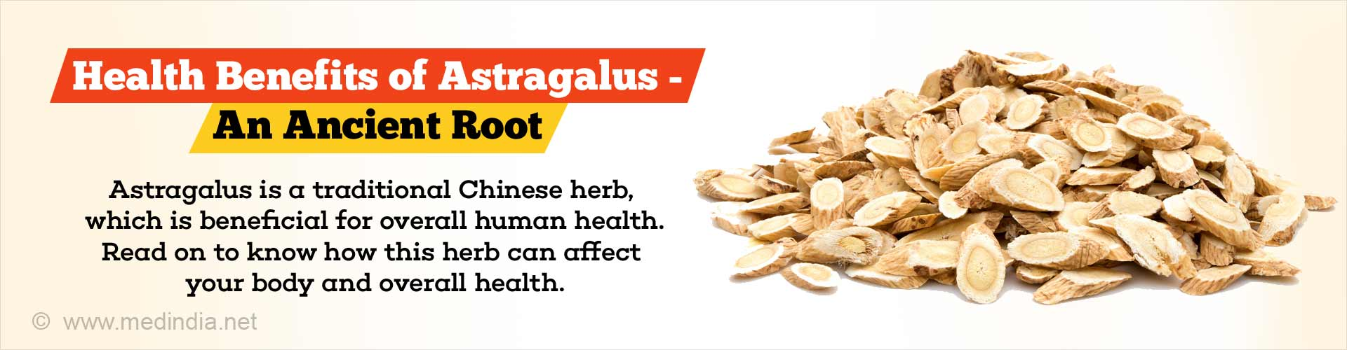 Health Benefits of Astragalus - An Ancient Root
