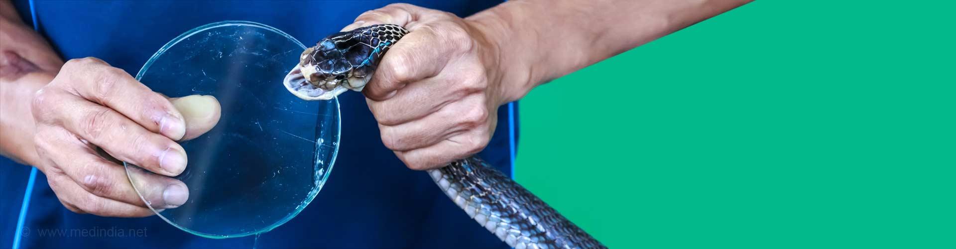 Indian Snake Antivenom