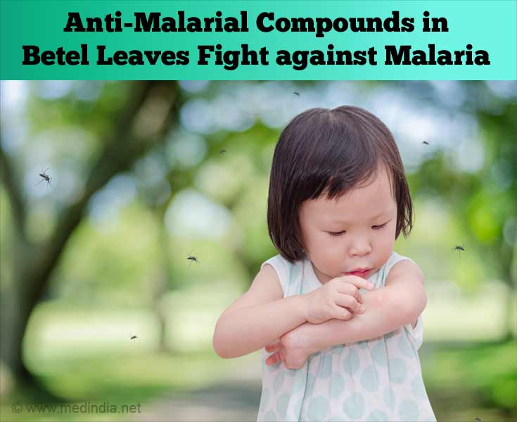 Anti-Malarial Compounds in Betel Leaves Fight Against Malaria