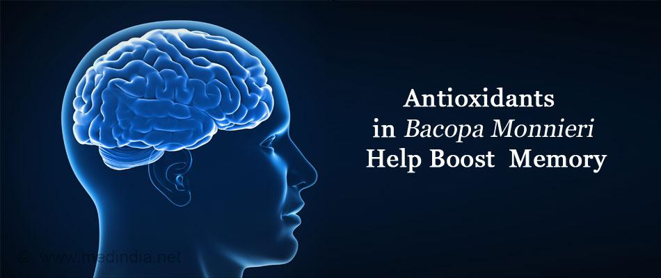 Antioxidants in Bacopa Monnieri Help Boost Memory