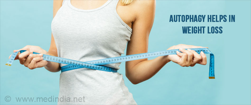 Autophagy Helps in Weight Reduction