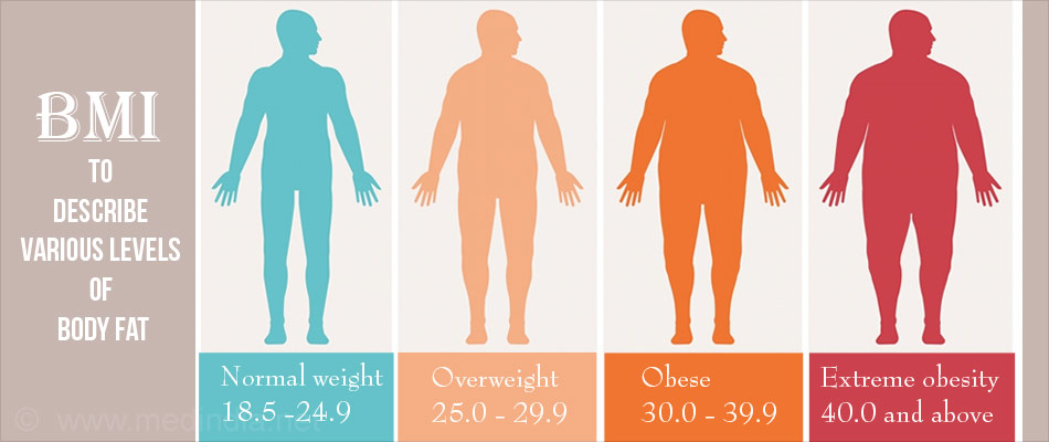 Body Mass Index Measures Obesity Based on Height & Weight