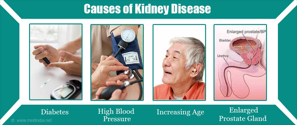 Causes of Kidney Disease