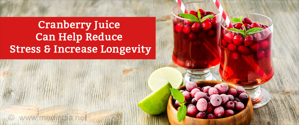 Cranberry Juice Can Help Reduce Stress & Increase Longevity