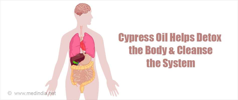 Cypress Oil Helps Detox the Body & Cleanse Your System